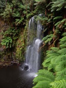 clearwater creek falls  apollo bay